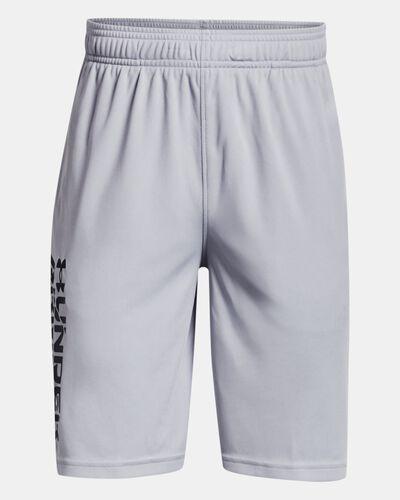 Boys' UA Prototype 2.0 Wordmark Shorts